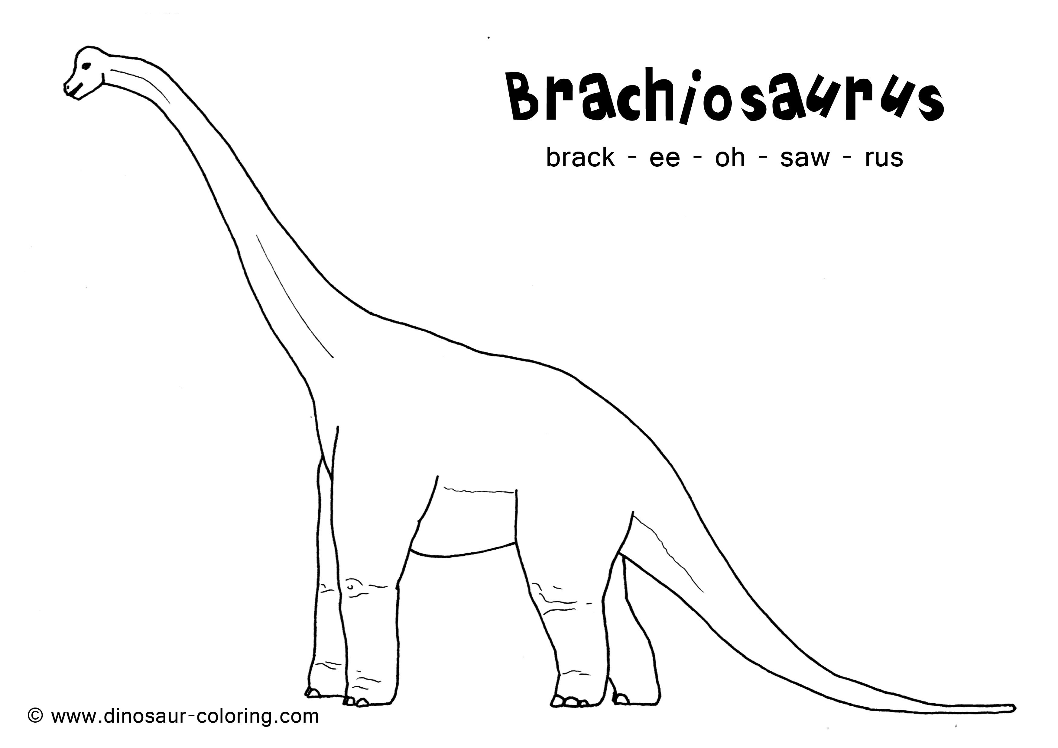 herbivore dinosaur coloring pages - photo#15