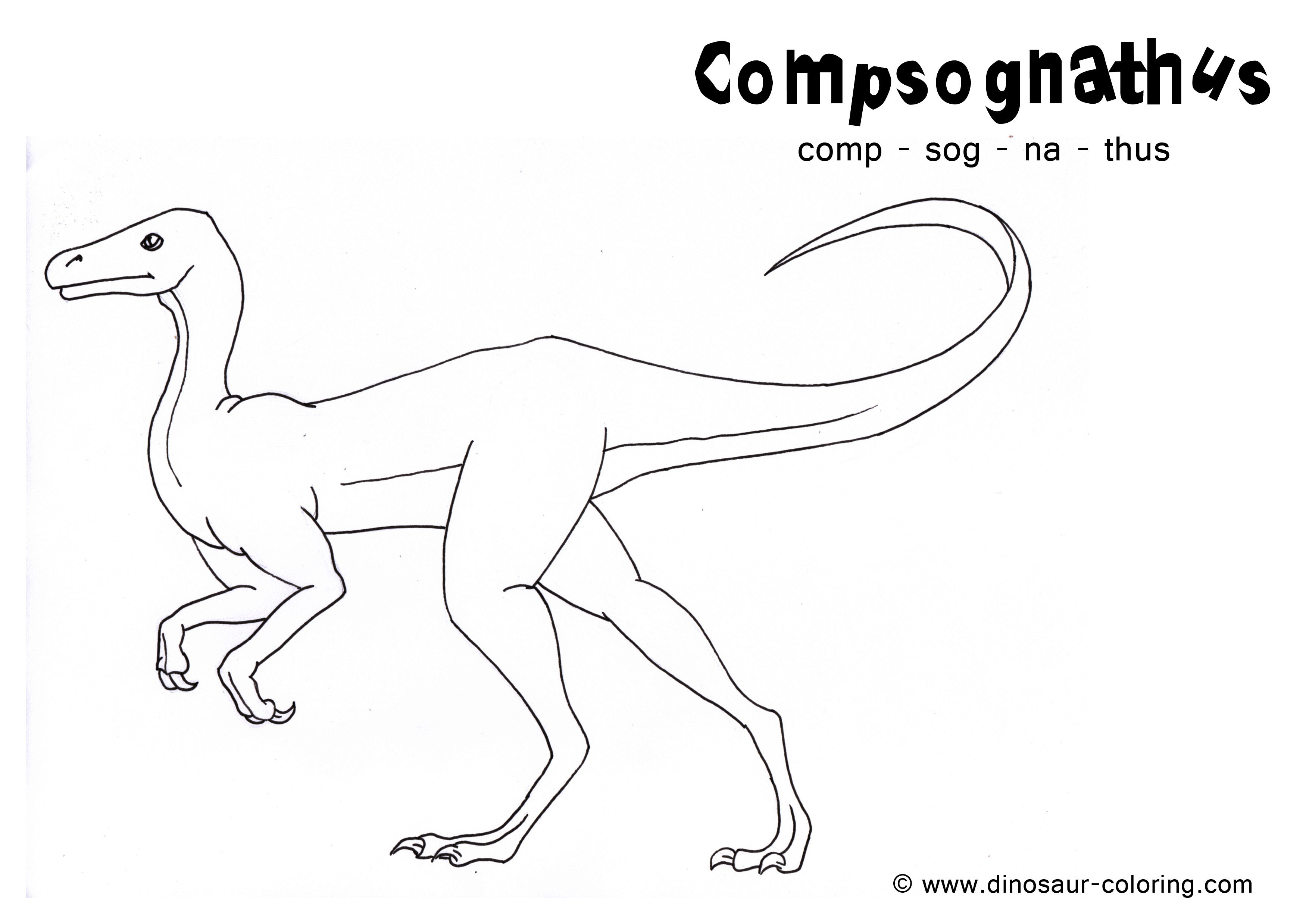 Free Coloring Pages Of Compsognathus