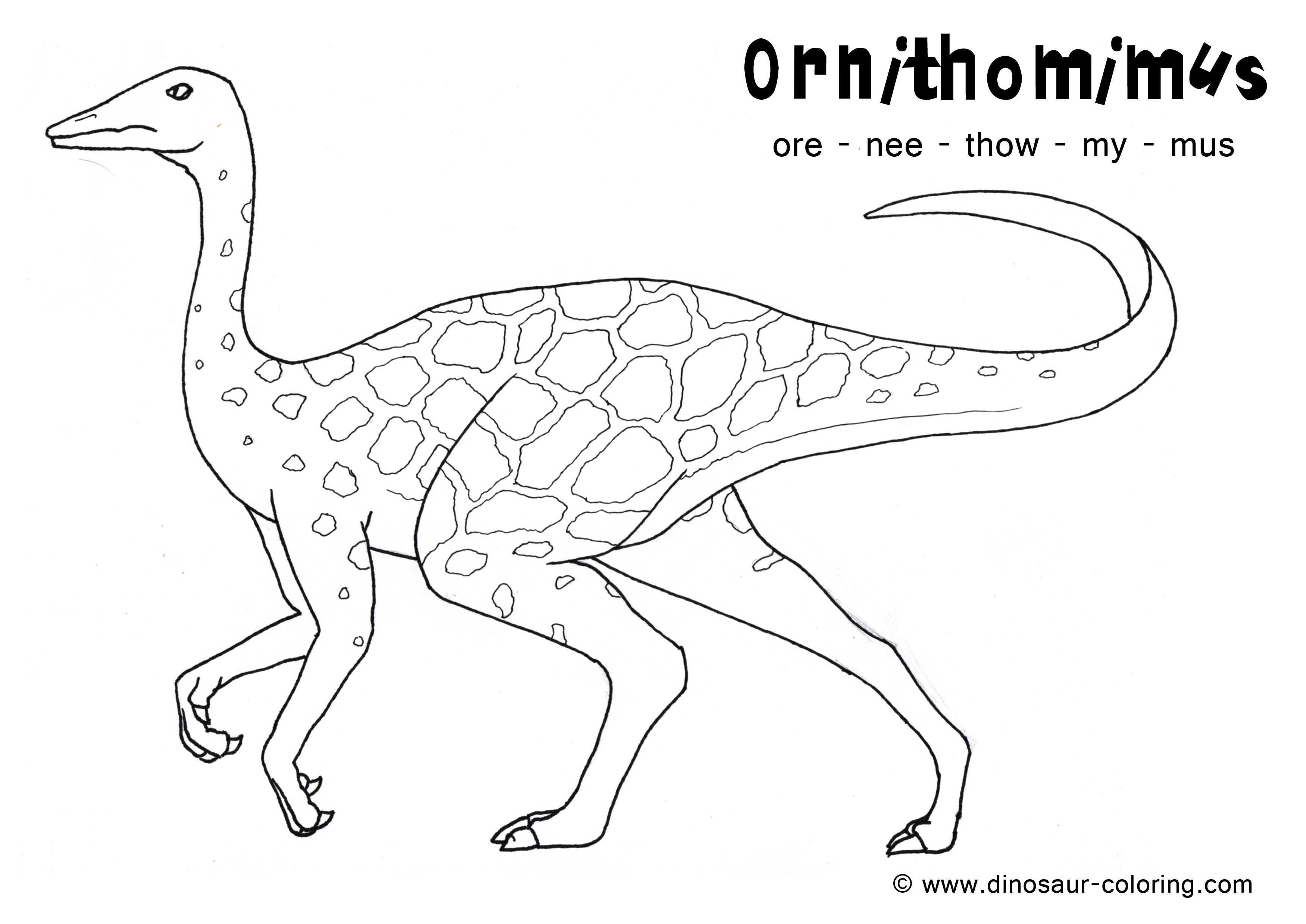 ornithomimus coloring