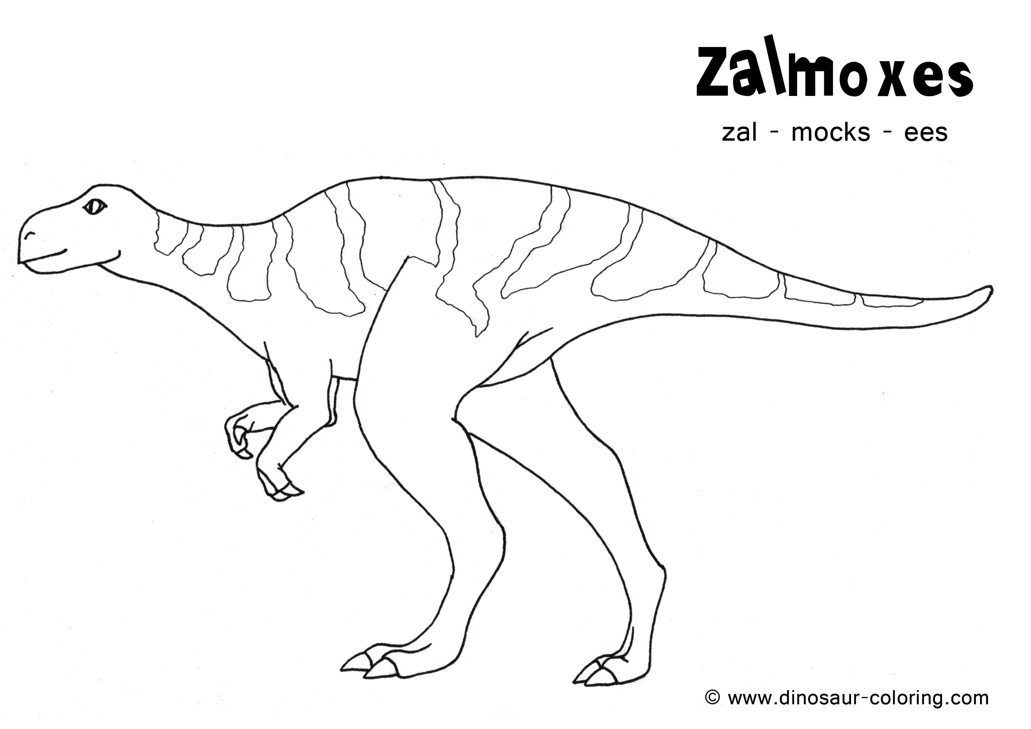Free Coloring Pages Of Neck Dinosaur